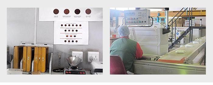 野角南非博士綠茶(40茶包)產品資訊