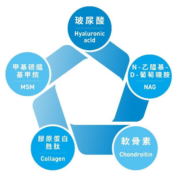 樂衛康-Borunnin玻潤凝(20ml x 30瓶)產品資訊