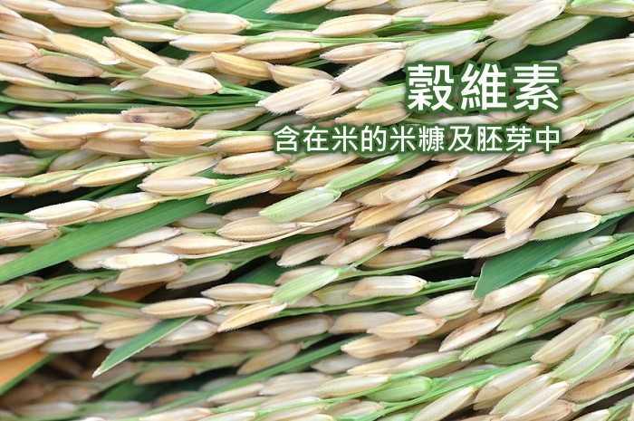 湧鵬生技-穀維素(60粒)產品資訊