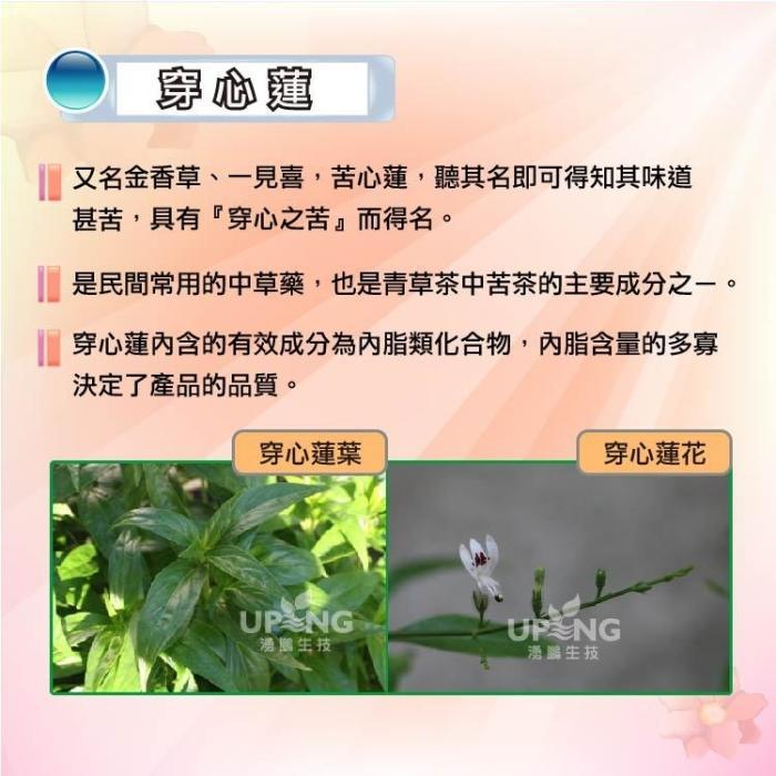 湧鵬生技-魚腥草穿心蓮蒲公英素食膠囊(60粒X3盒)產品資訊